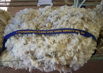 Winning fleece