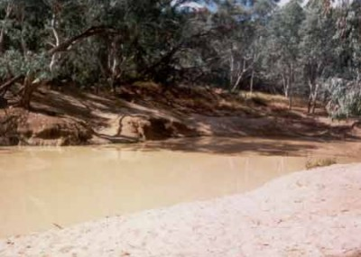 The Pump Hole is a popular picnic area on the Thomson River