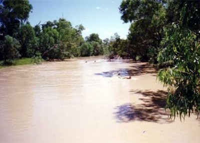 The Thomson River in flood