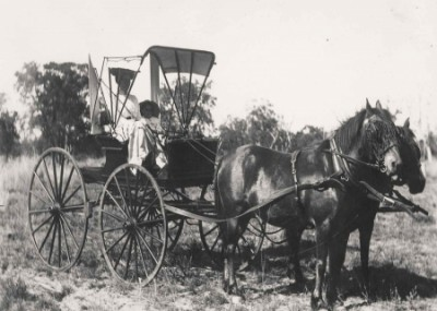 Two Horse Drawn Carriage